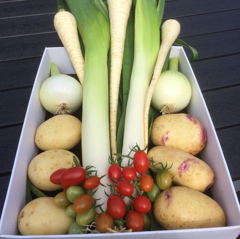 Winner - Veg Collection Class