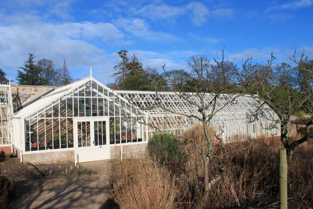 new glasshouses