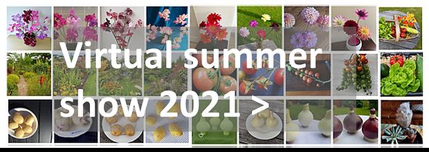 virtualshow2021_banner.png