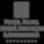 Logo Peter Filho - Site GMS.png