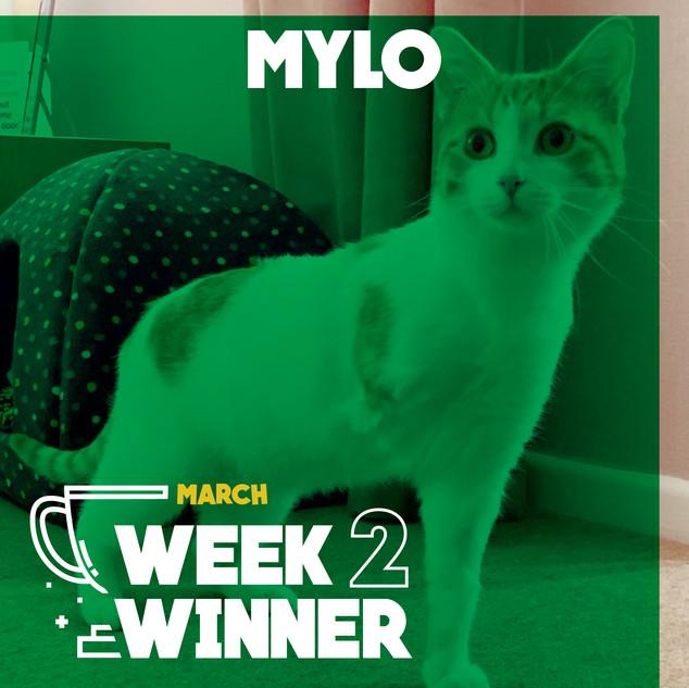 March Week 2 Winner
