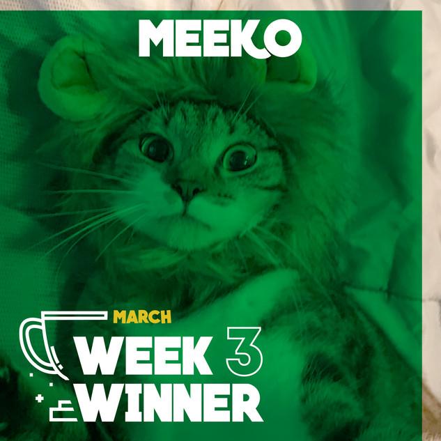 March Week 3 Winner