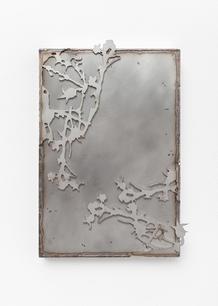 Thistle Mirrror II, 2020 Stainless steel. 23 x 34 x 4 cm