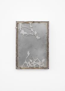 Thistle Mirrror I, 2020 Stainless steel,  20 x 29 x 4 cm