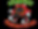 logo na ikone.png