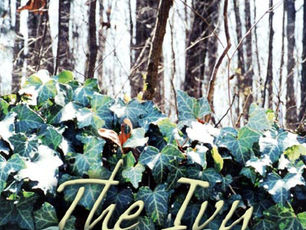 The Ivy Stays Green 2nd Edition Published