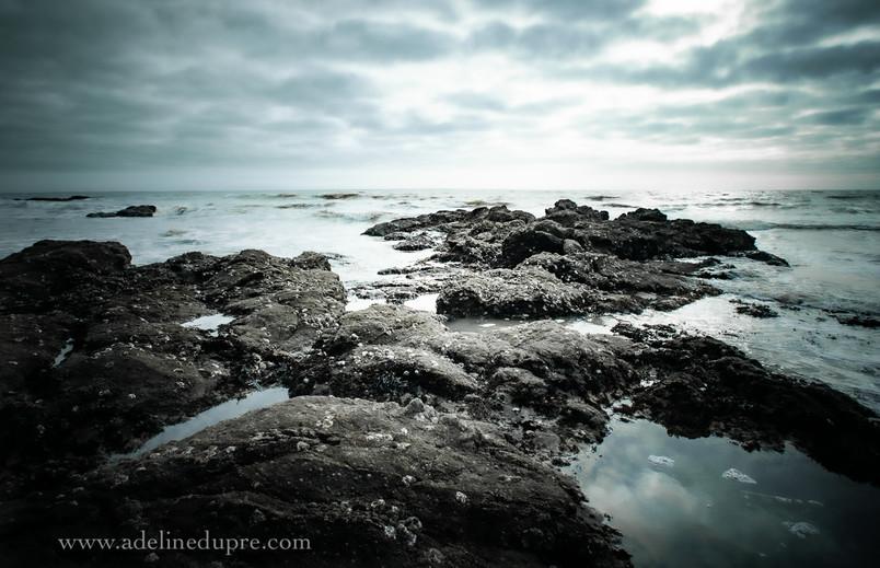 Photographe paysage Angers