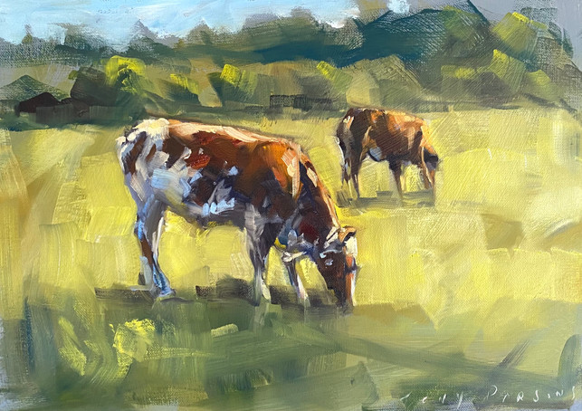 Windemere Cows