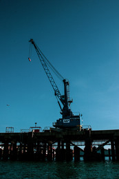 Local Shipping Company A&P's Crane