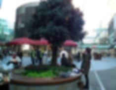 camila4.jpg