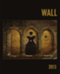 Standing within the archway of a Syrian castle, a mysterious women dressed in black faces a brick wall embedded with words from a poem in the 2013 cover of WALL.