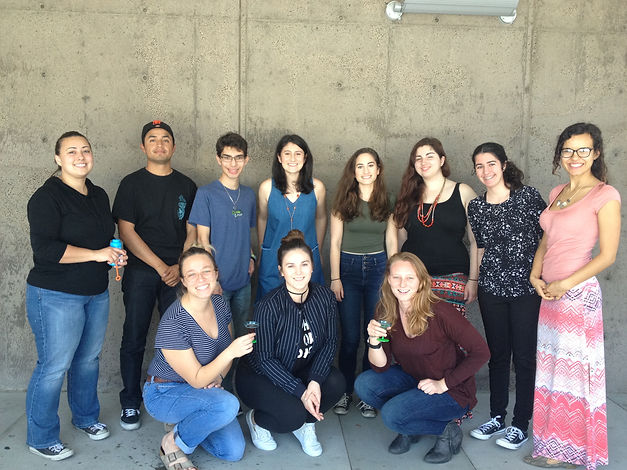 Eleven members of the WALL 2016 staff pose in front of a wall.