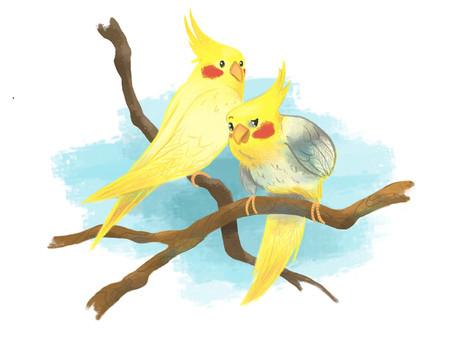 Nugget und Twitty
