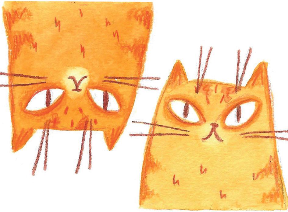 Visitenkatzen