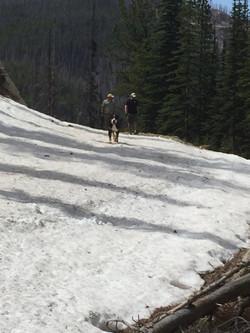 Snow Blockage