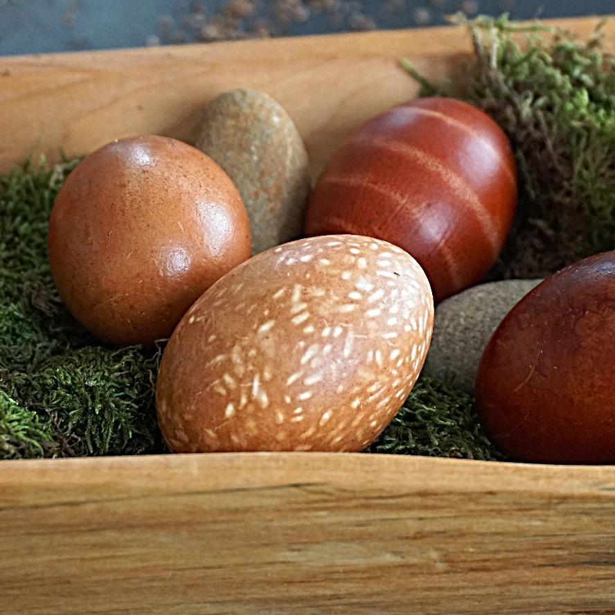 gesprenkeltes Ei