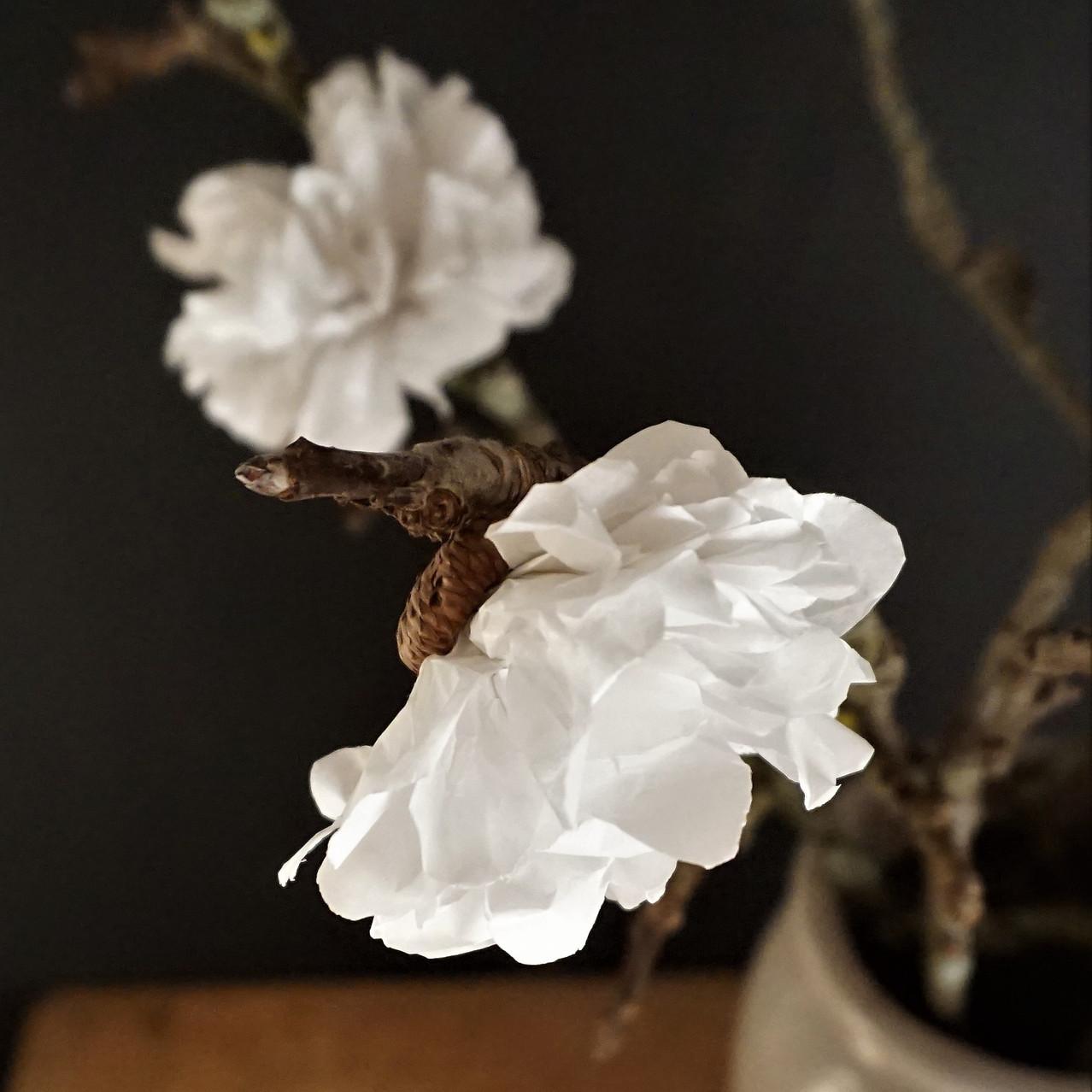 Papierblüten