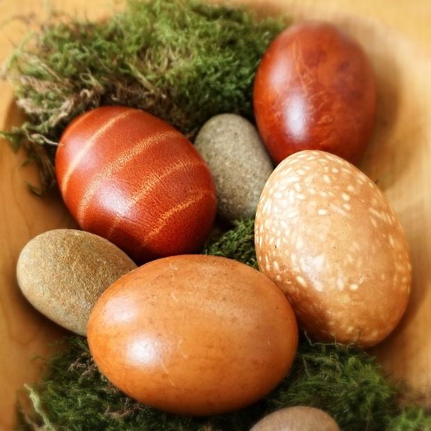verschiedene Eier