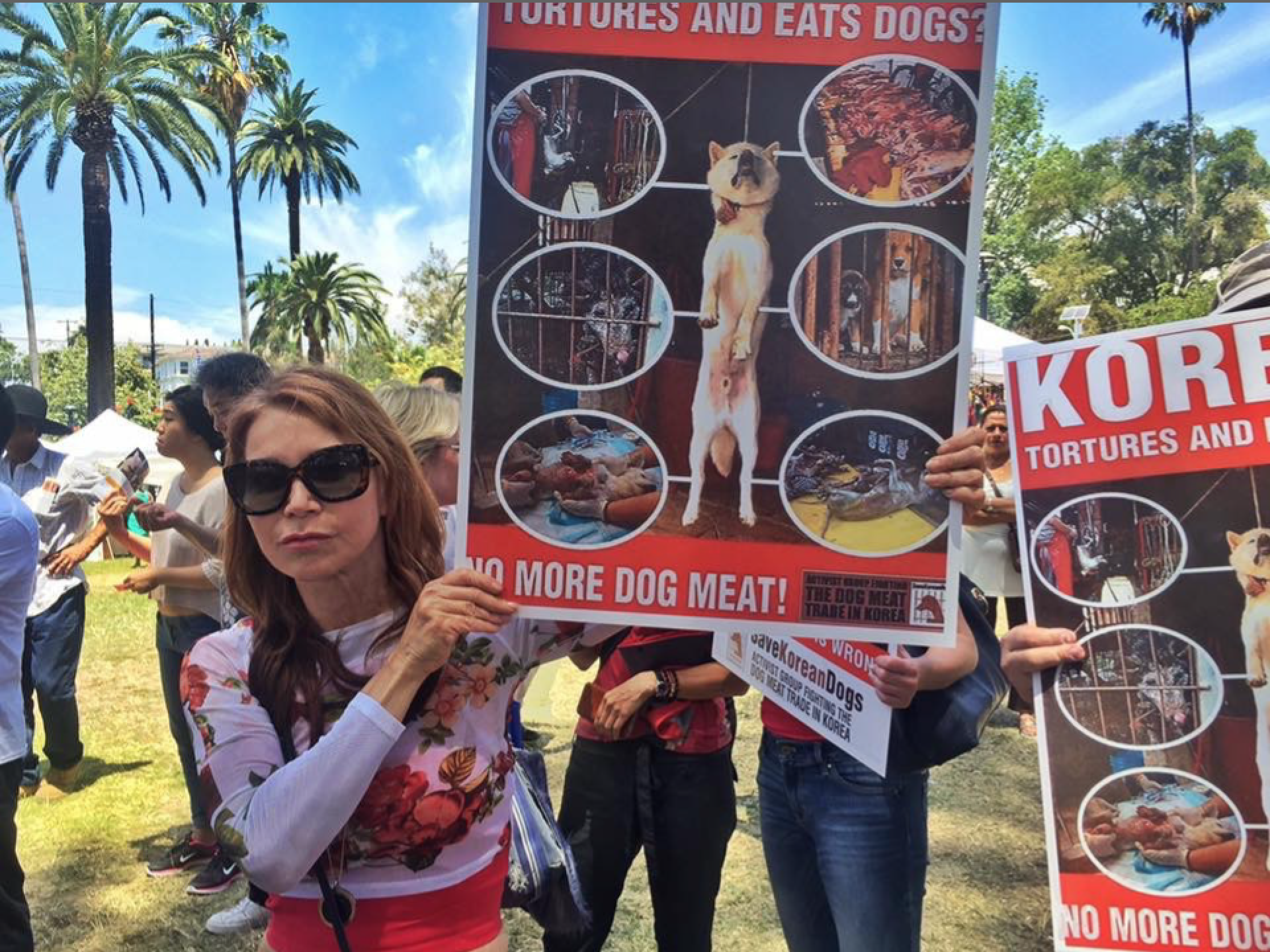 anti-dog-meat-protest