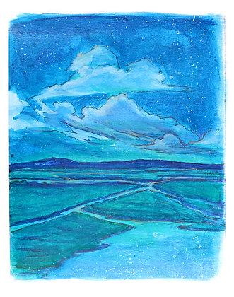 Blue Night on Marsh