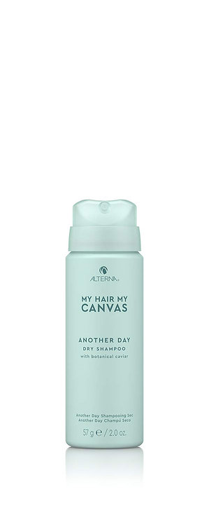Alterna My Hair My Canvas Another Day Dry Shampoo