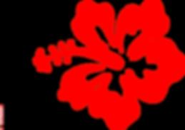 hibiscus-flower-hi.png