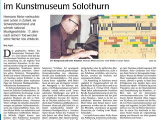 Hermann Meiers Werke im Kunstmuseum Solothurn