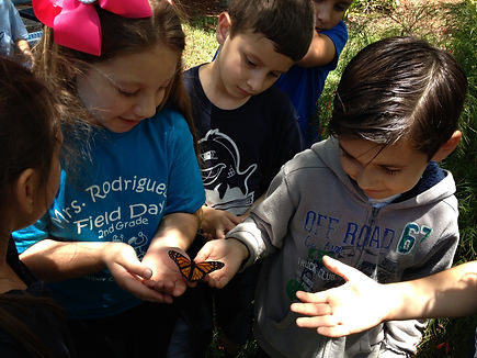 Students holding and observing a butterfly