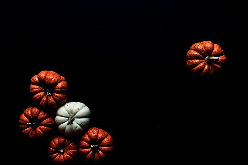 Pumpkins%2520%2520_edited_edited.jpg