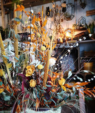 Dried Flowers Friday 😜  #driedflowers #