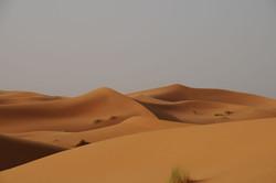 desert_merzouga.jpg