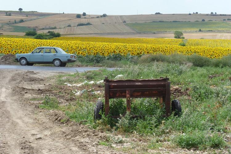 turquie2011316.jpg