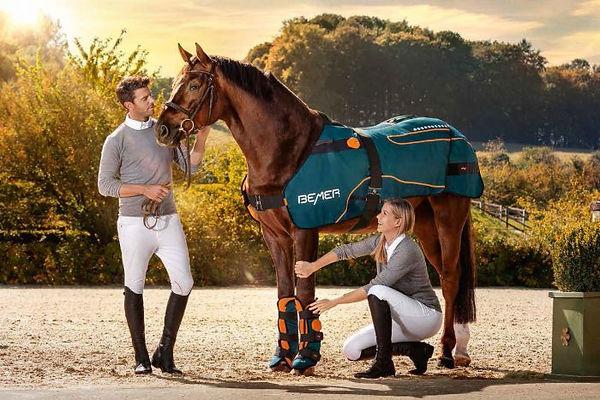 bemer-horse-set-700x467.jpg
