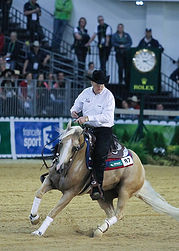 BEMER_Horse-Set_Tom_McCutcheon.jpg