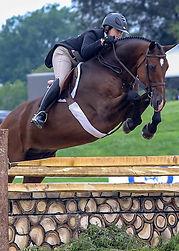 BEMER_Horse-Set_Victoria_Colvin.jpg
