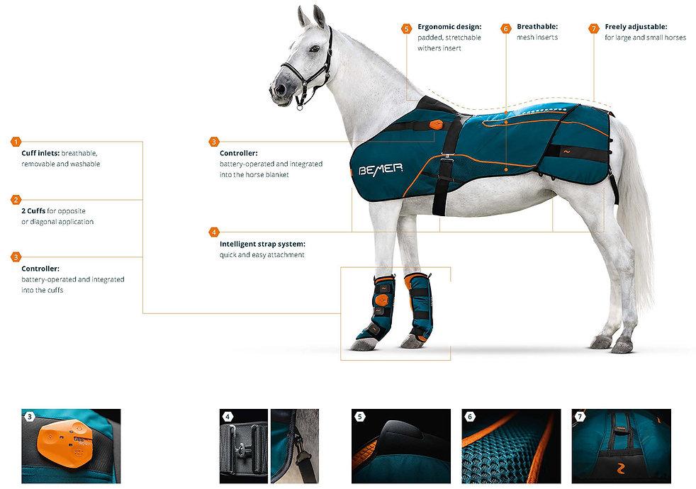 Horse-Set-Features.jpg
