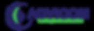 Logo Advicom