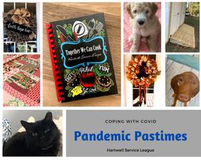 Pandemic Pastimes Hartwell Service Leagu