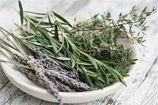 herbs-2523119_1920 (2).jpg