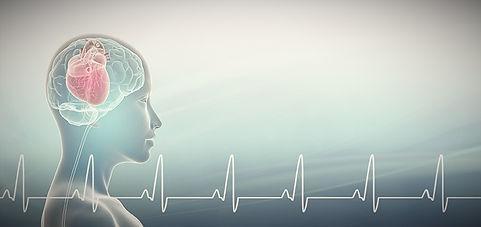 HMI-Blog-Heart-Brain-Interactions_edited