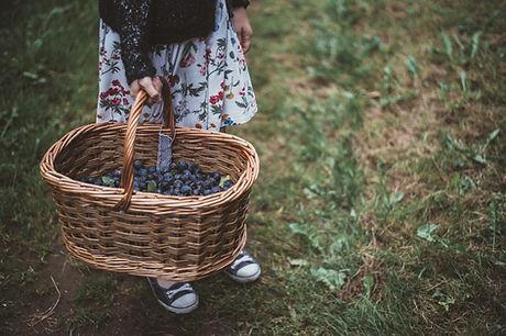 Chica con cesta de bayas