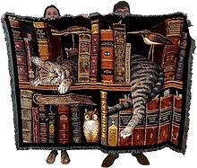 book throw.jpg
