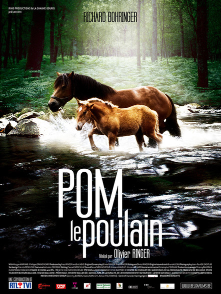 Pom le Poulain - Pom the Foal