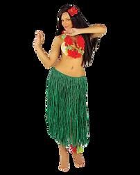 hula-rock-gruen--bastrock-hawaii--suedse