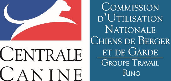 Groupe Travail Ring