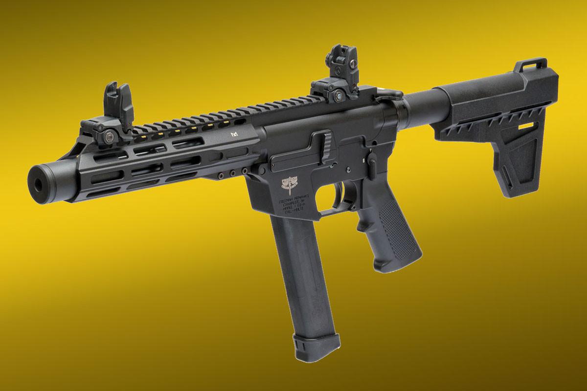 FX9v2_P8_lt-ang-sights.jpg