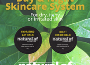 Day & Night Skincare System