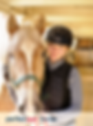 horse_blog_600x600.png