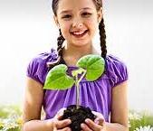 Umweltfreundlich haushalten/ Geld sparen