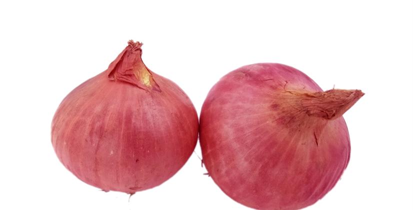 Onion | পেঁয়াজ